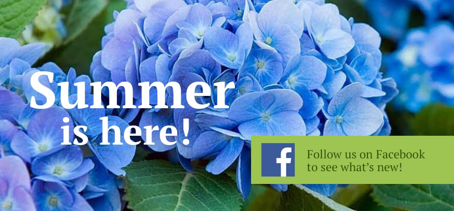 Summer is here at Attleboro Farms!  Follow us on FB to see what's new!