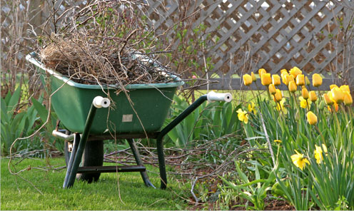 Spring Cleanup with Total Landscape Management Attleboro MA