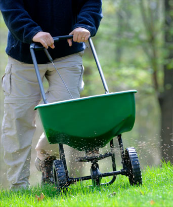 Lawn Fertilization Services Attleboro MA
